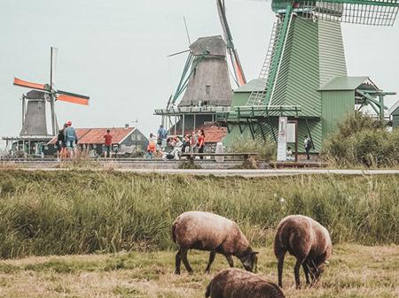 Schülerreisen Holland